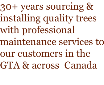 30+ years sourcing & installing quality trees with professional maintenance services to our customers in the GTA & across  Canada